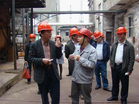 市人大常委会执法检查组检查广西百色东信化工有限责任公司