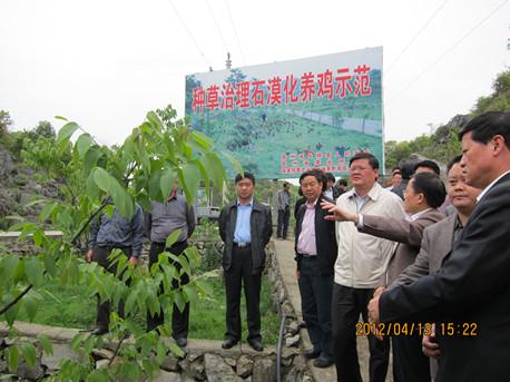 考察团到贵州省长顺县石漠化治理示范区考察