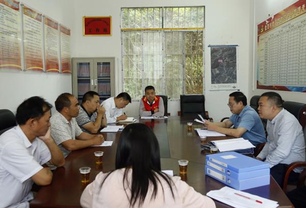 凌云县人大常委会领导到基层开展软弱涣散党组织集中排查工作