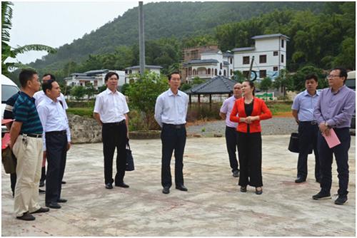 市人大常委会到田东县开展乡村规划建设管理工作调研