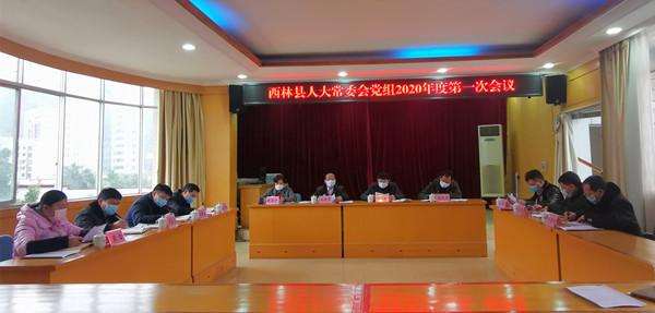 西林县人大常委会党组召开2020年度第一次会议转达学习中央疫情防控工作有关会议精神