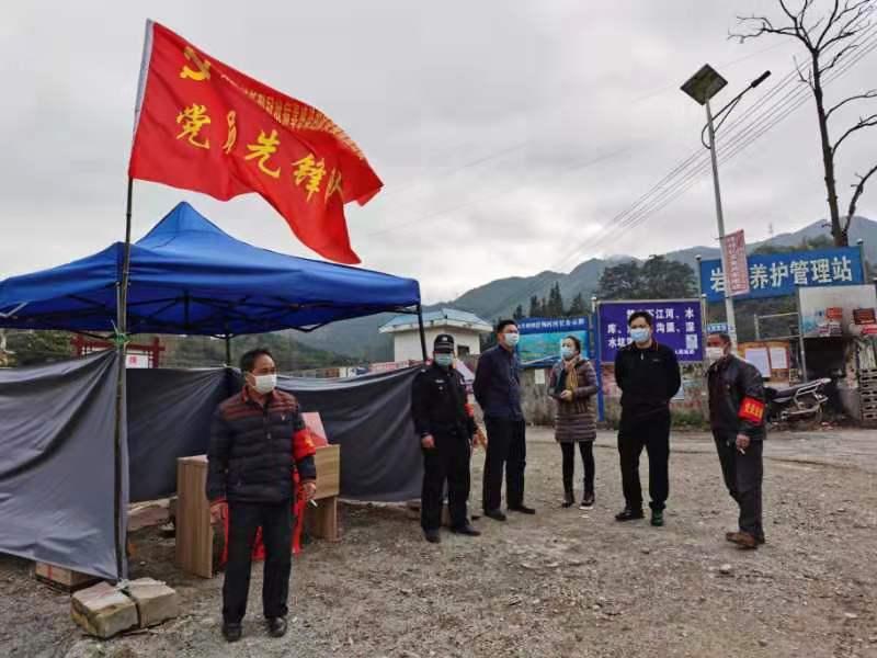 隆林各族自治县人大常委会组织开展疫情防控工作侧记