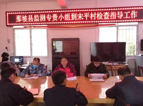 黄彩兰副主任到宋平村指导脱贫监测工作