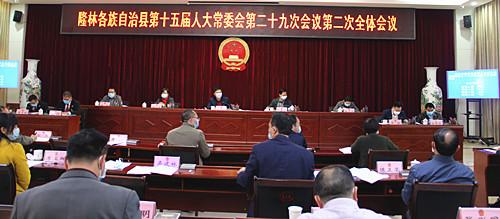 隆林各族自治县第十五届人大常委会第二十九次会议召开