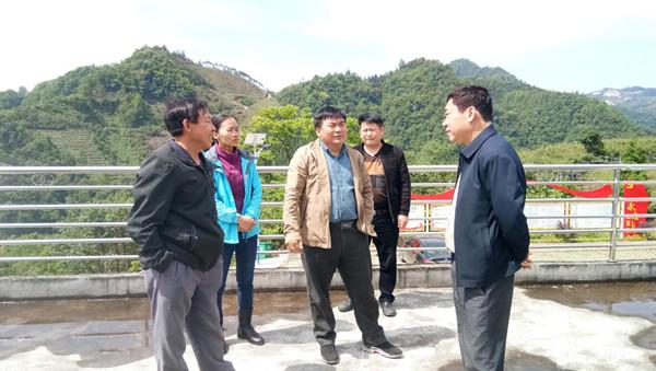 县人大常委会领导深入甘田调研猕猴桃产业