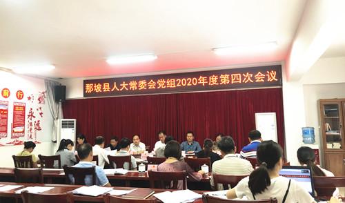 那坡县人大常委会召开党组会议