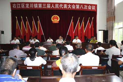 刘丽珍副主任深入龙川镇指导第三届人民代表大会第八次会议