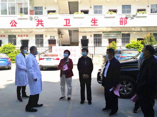 黄运志副主任率队到田东开展《关于加强全市公共卫生工作的决定》工作检查
