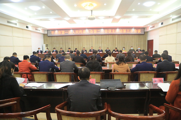 平果市第一届人民代表大会第二次会议主席团举行第三次会议
