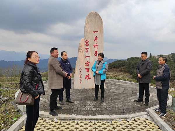龚永超率队赴湖南省古丈、永顺等县区考察野生茶树保护与开发工作