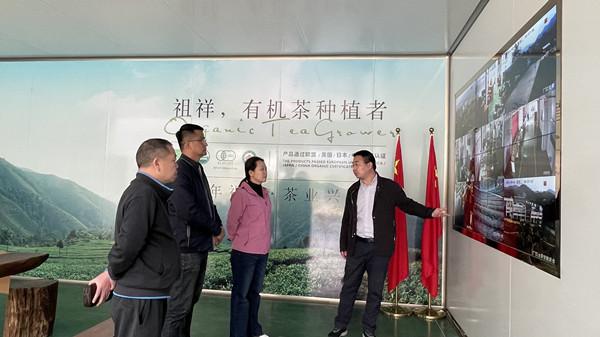 张恺婧率队赴滇考察学习野生茶树保护与开发