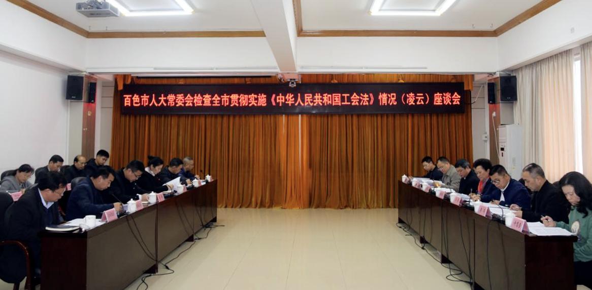 百色市人大常委会检查组到凌云县开展《工会法》执法检查