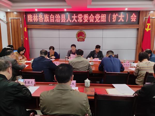 隆林各族自治县人大常委会党组召开扩大会议