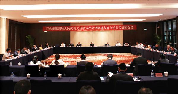 徐波参加隆林各族自治县代表团审议