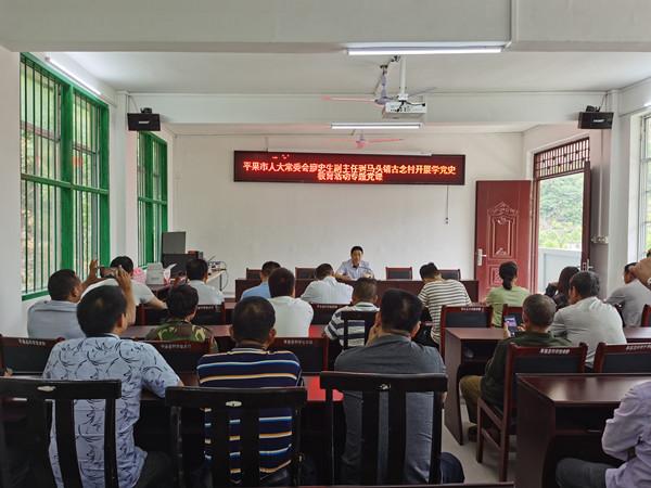 廖忠生副主任到平果市马头镇上党史学习教育活动专题党课