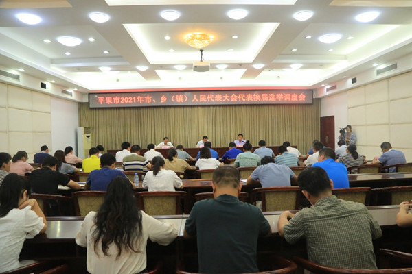 平果市召开2021年市、乡(镇)人民代表大会代表换届选举调度会