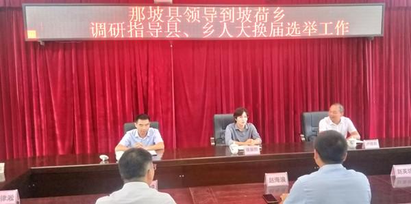 骆丽熙到坡荷乡调研指导县乡人大代表换届选举工作