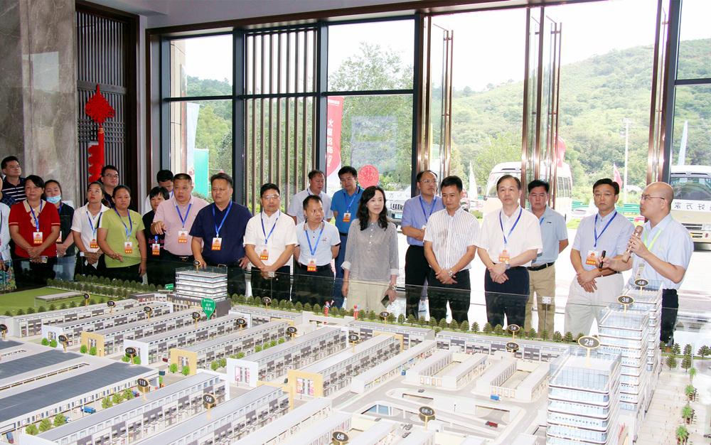 驻桂部分全国人大代表和自治区人大代表在我市开展年中专题调研