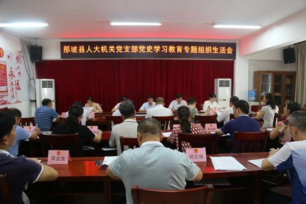 那坡县人大机关党支部召开党史学习教育专题组织生活会