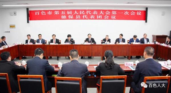 周武红参加德保县代表团审议