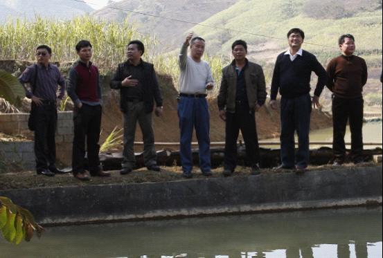 右江区人大常委会领导到龙川镇调研